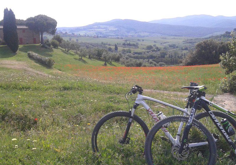bici e campagna