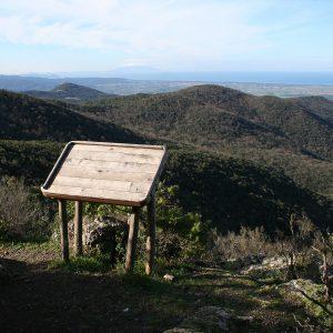 (Macchia MAgona vista paesaggio)